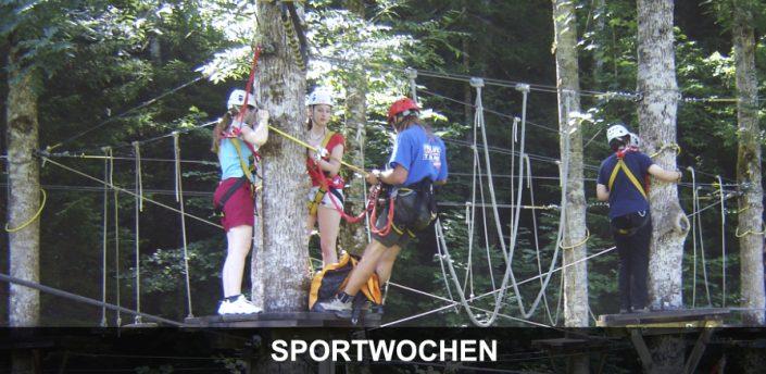 Schulsport Wien - Schüler im Klettergarten